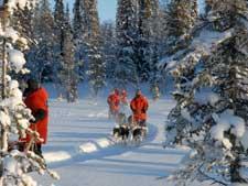 Äkäskero Hundeschlittentour in Lappland